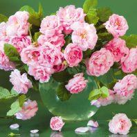 Картичка с розови цветя