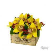 Жълти орхидеи