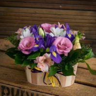 Aranjirovka s iris