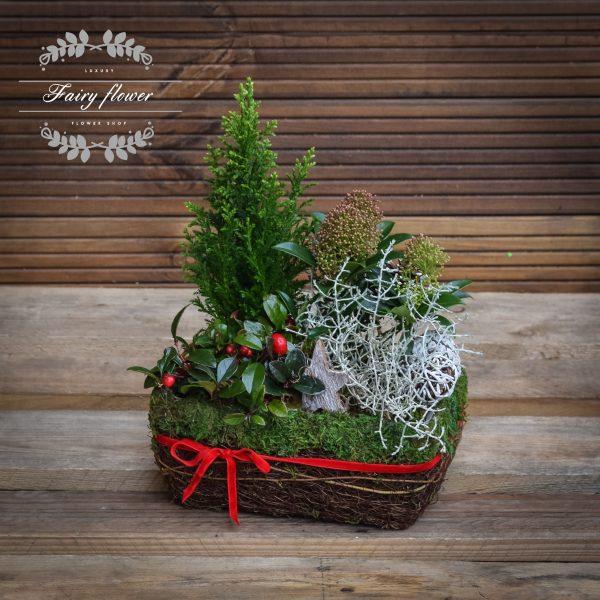 Зимна композиция с растения