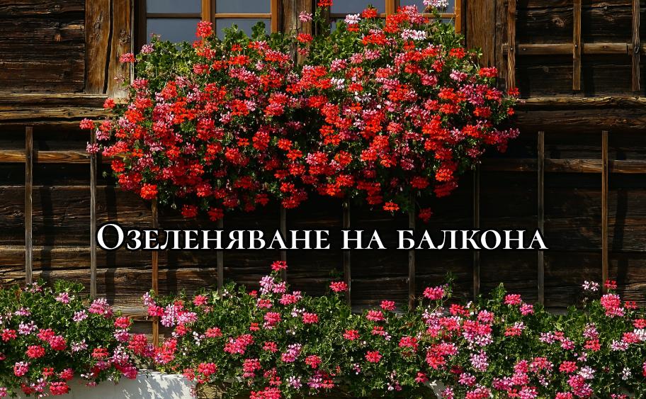 Озеленяване на балкона